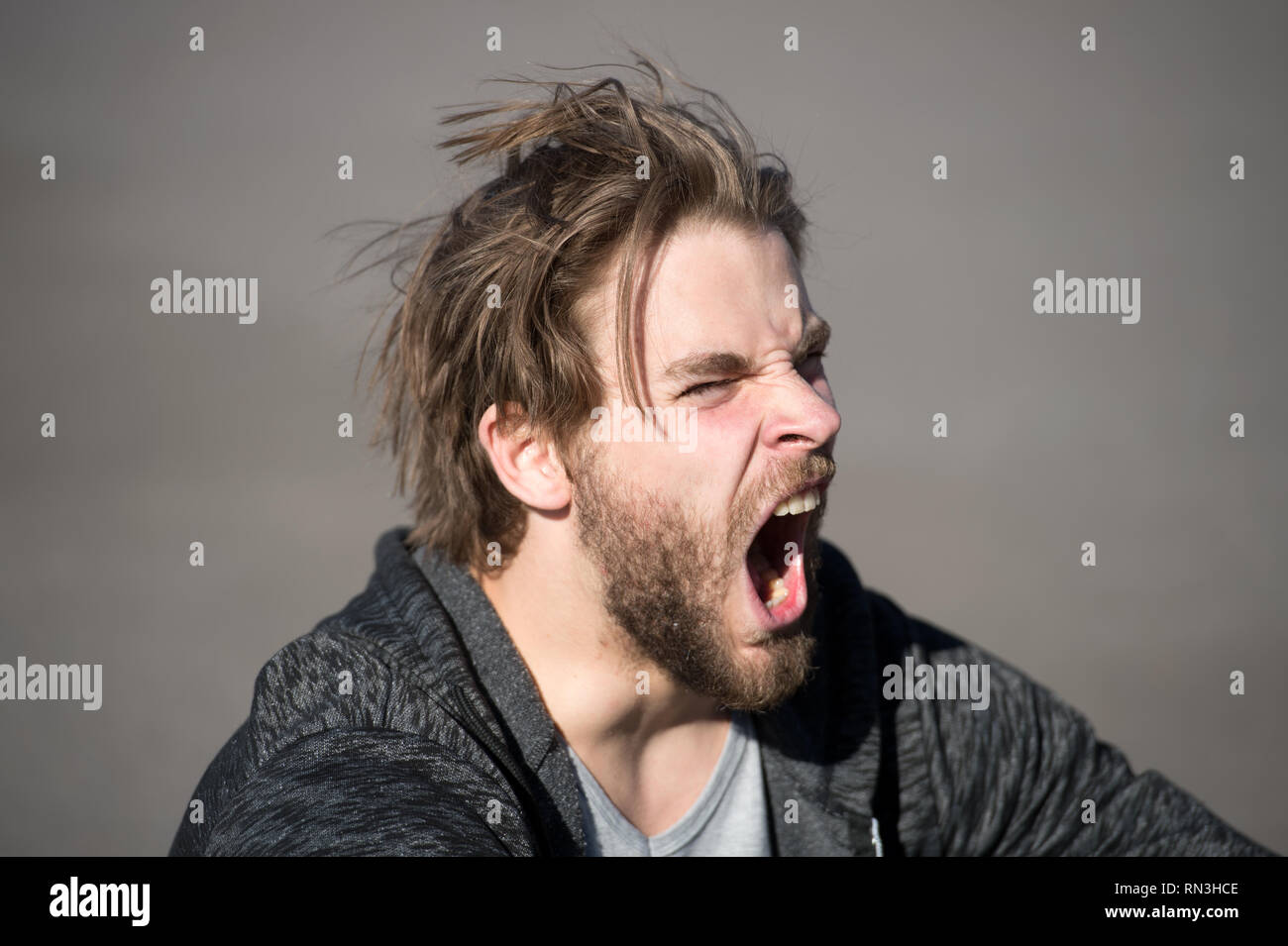 shouting or yawning handsome man or bearded guy with beard and stylish hair sunny outdoor on grey background - Stock Image