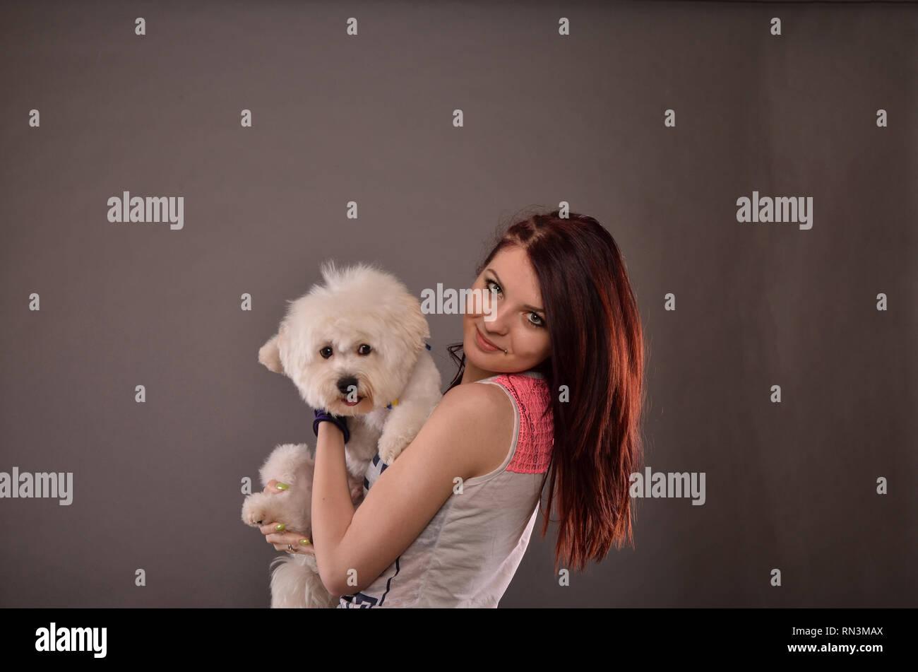 Cute redhead teenage girl holding Maltese puppy, studio shot against gray background - Stock Image