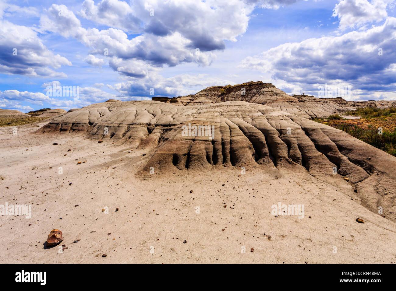 Badlands of Dinosaur Provincial Park, Alberta, Canada. - Stock Image