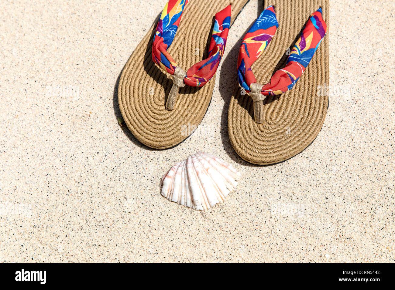 049b2b283 background sand background summer slippers and sea shell in Gili Trawangan