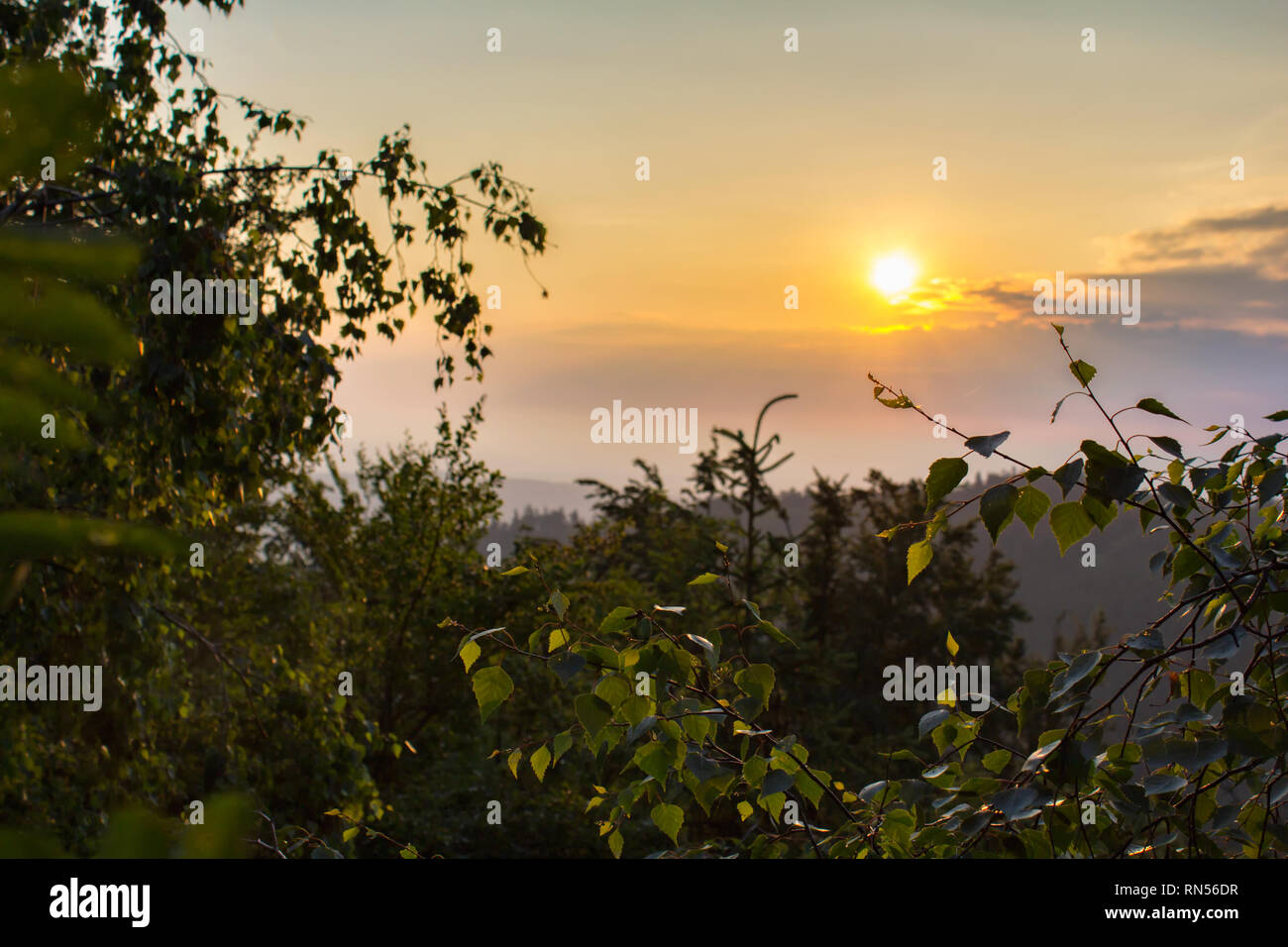 Amazing sunrise through trees with mysty fog, Mandelstein, Austria - Stock Image
