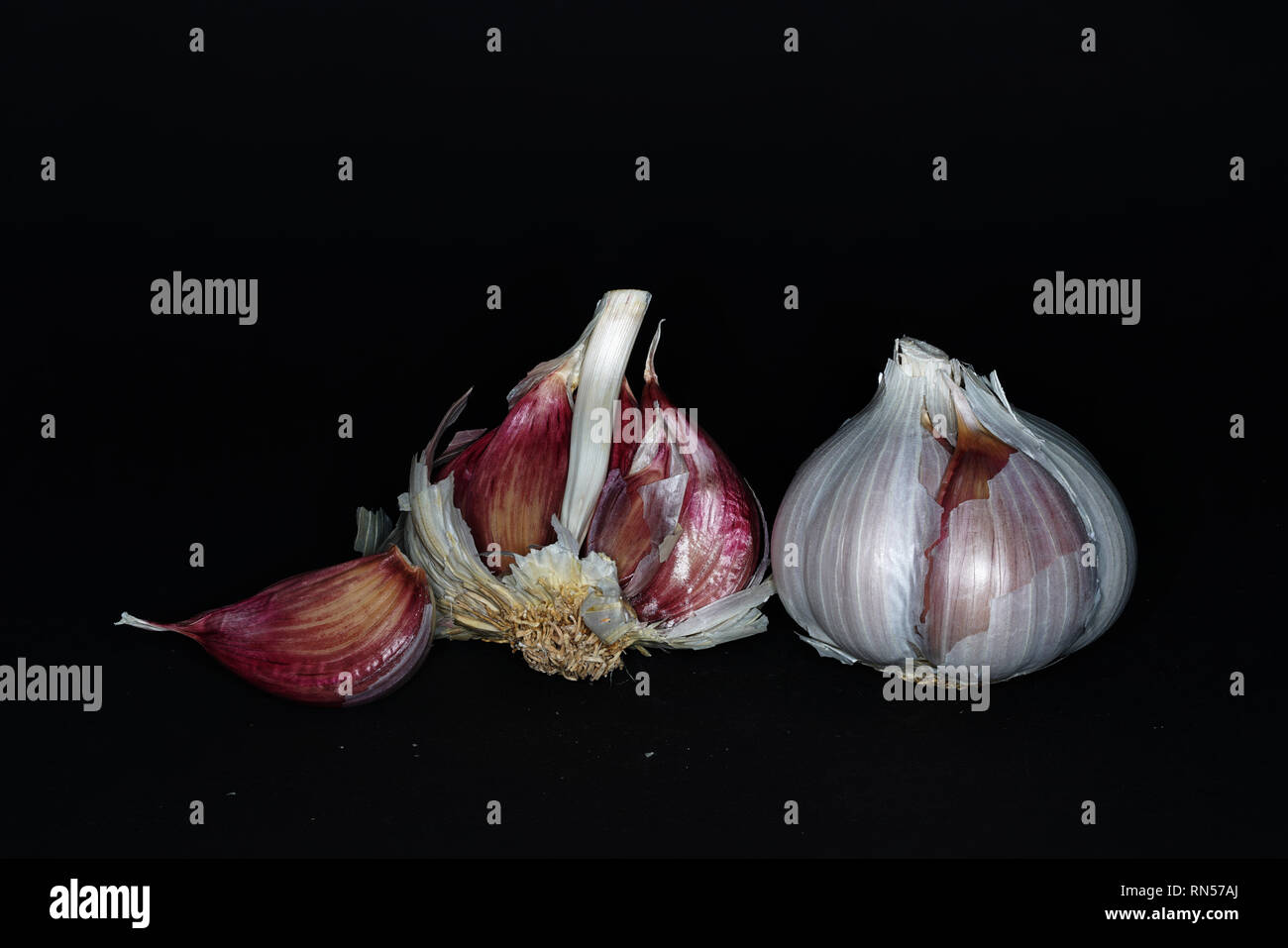 Photographed garlic several times and produced the highest possible depth of field with Focus Stacking - Stock Image