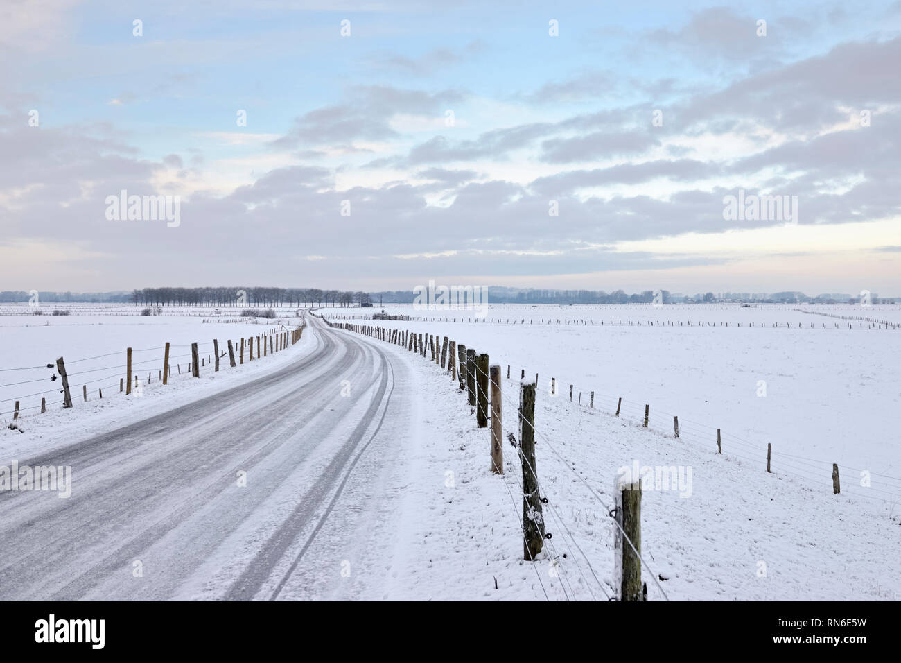 View over the Bislicher Insel / Bislicher Island, snow covered wide open grassland, well-known nature reserve loctaed in North Rhine Westfalia, Lower  - Stock Image