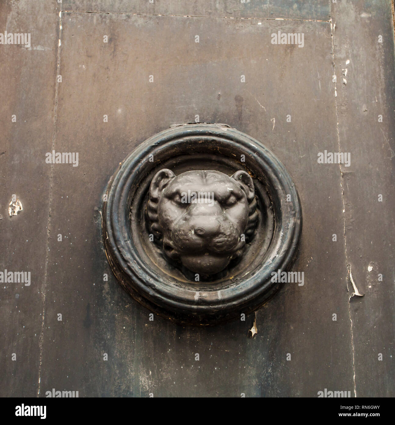 Lions head on the doors of Durham Crown Court in Durham,England,UK - Stock Image