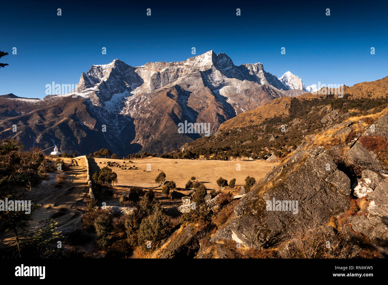 Nepal, Everest Base Camp Trek, Namche Bazaar, elevated pasture at Government Yak Breeding Farm opposite Kongde Ri peak Stock Photo