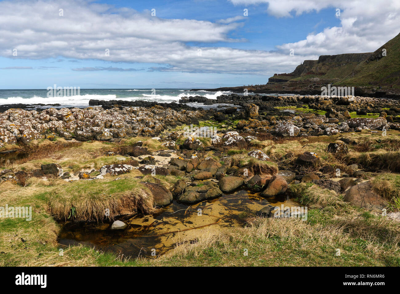 Landscapes in the Giants Causeway area of outstanding natural beauty, Antrim, Northern Ireland, Europe - Stock Image