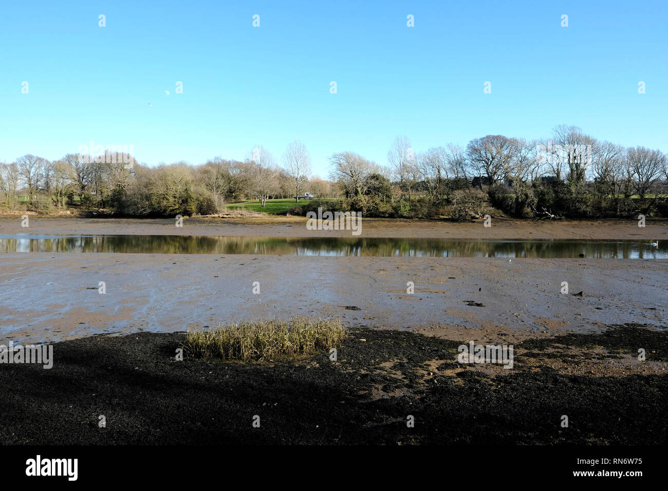 Banks of the Medina River at Newport, Isle of Wight, England, UK. Stock Photo