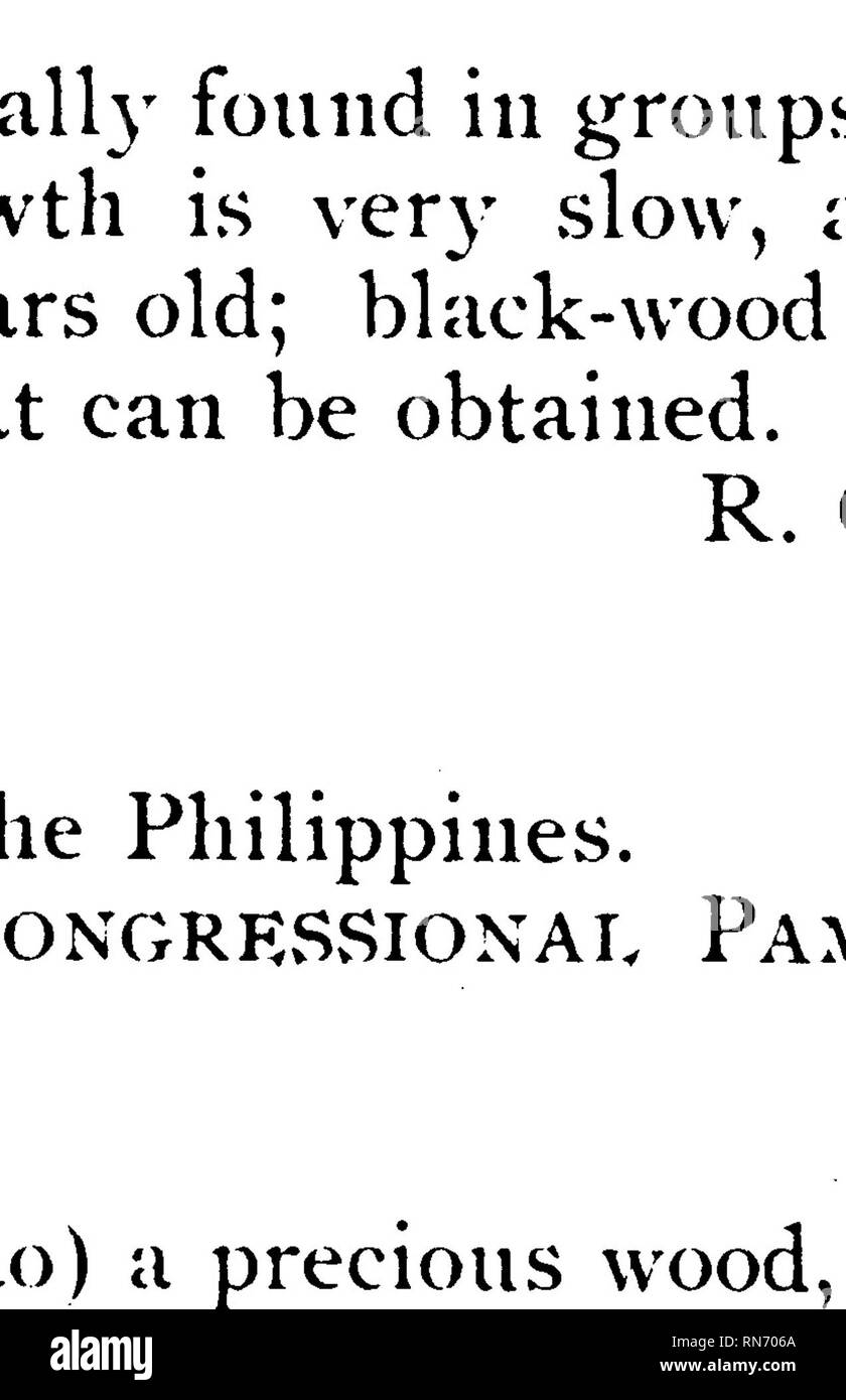 . Compilation of notes on the most important timber tree species of the Philippine Islands. Timber; Trees. EBONY. Maba buxifolia, Pers. Diospyros nigra, Congressional pamphlet. Pam. Ebenace®. Atlas, gtnopsis, Flora Forestal de FMplnaa, 8. Vidai, lam, LXIII, H. fins. /, 2, 9f 5. Page SO. -Vw *^<.*&&&&£. Please note that these images are extracted from scanned page images that may have been digitally enhanced for readability - coloration and appearance of these illustrations may not perfectly resemble the original work.. Ahern, George Patrick, 1859-1942. [Manila] Stock Photo