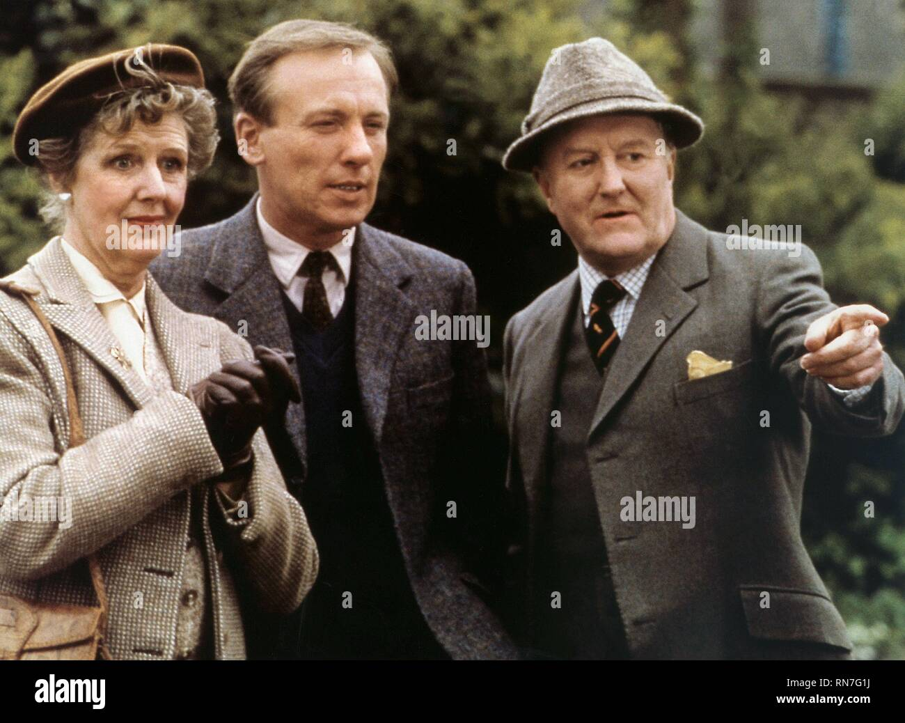 ALL CREATURES GREAT AND SMALL, ALISON LEWIS, CHRISTOPHER TIMOTHY , ROBERT HARDY, 1988 - Stock Image