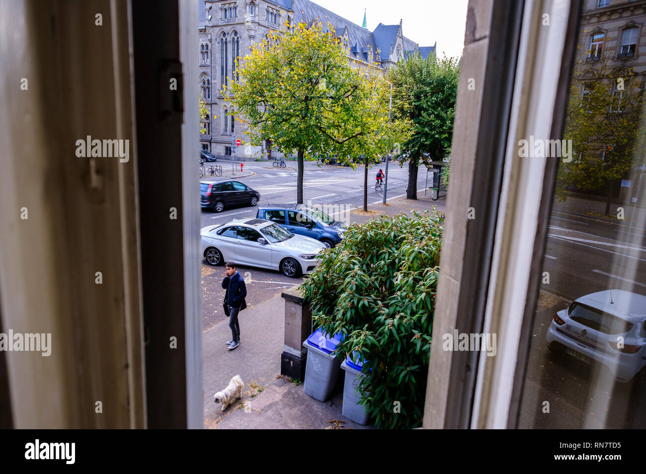 Strasbourg, Alsace, France, framed by window, street, cars, young man walking the dog, - Stock Image