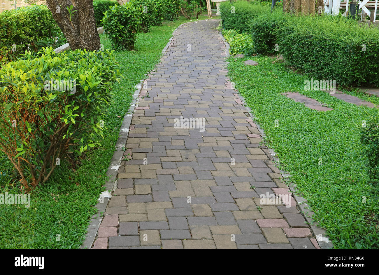 Stone Block Paved Walkway in the Greenery Garden - Stock Image