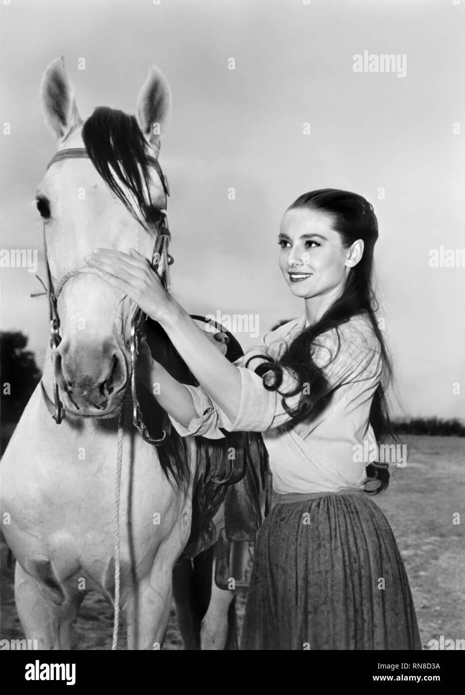 AUDREY HEPBURN,HORSE, THE UNFORGIVEN, 1960 - Stock Image