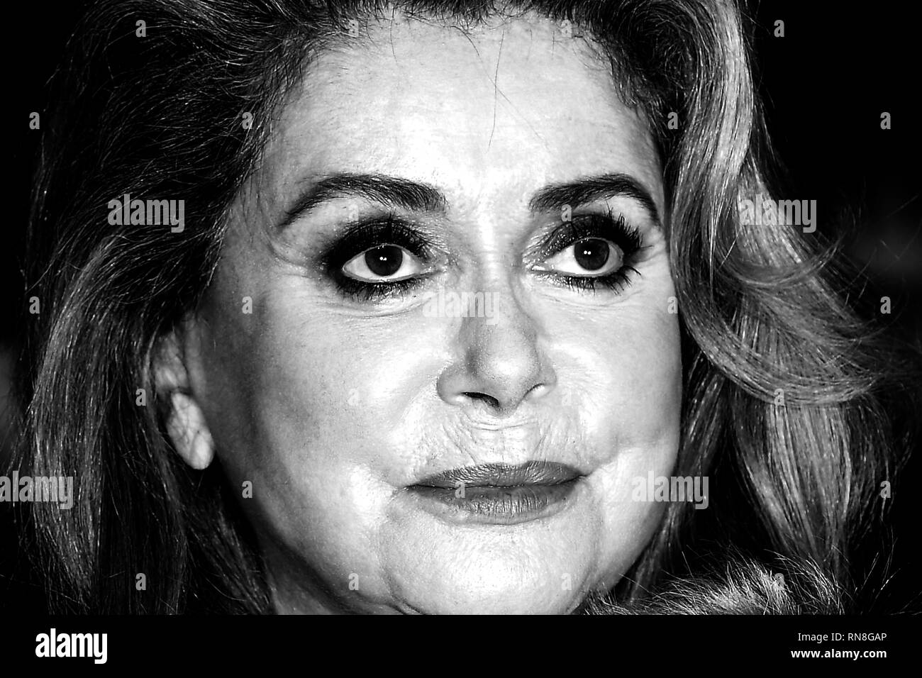 Catherine Deneuve attends the premiere for Farewell to the Night (L' adieu la nuit) during the 69th Berlin Film Festival. © Paul Treadway - Stock Image