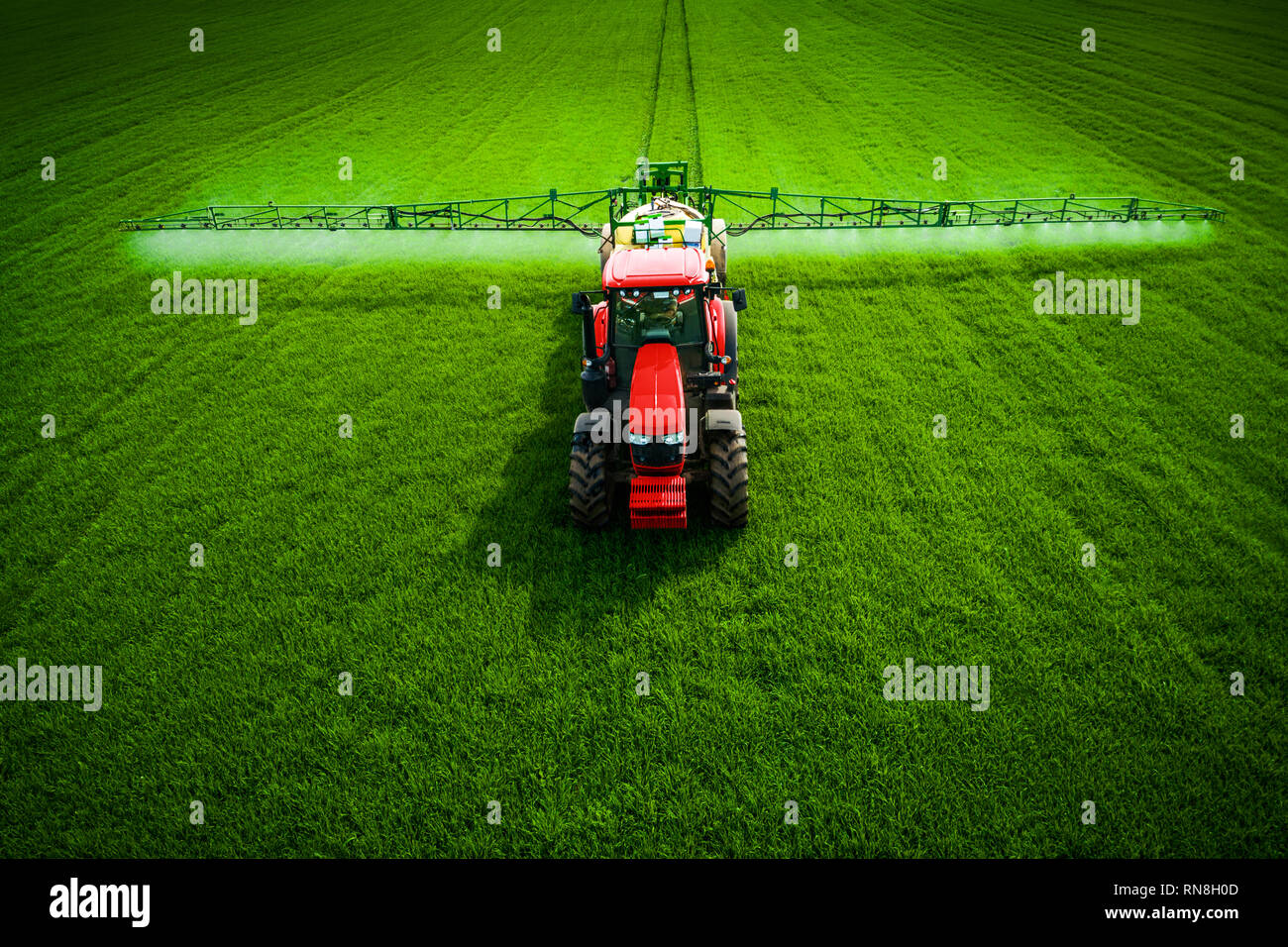 Фarming tractor plowing and spraying on green wheat field, aerial drone view - Stock Image