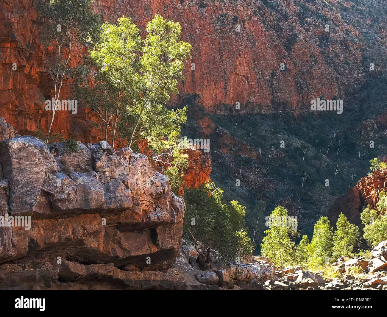 view of the gorge walls at ormiston gorge in the west macdonnell ranges - Stock Image