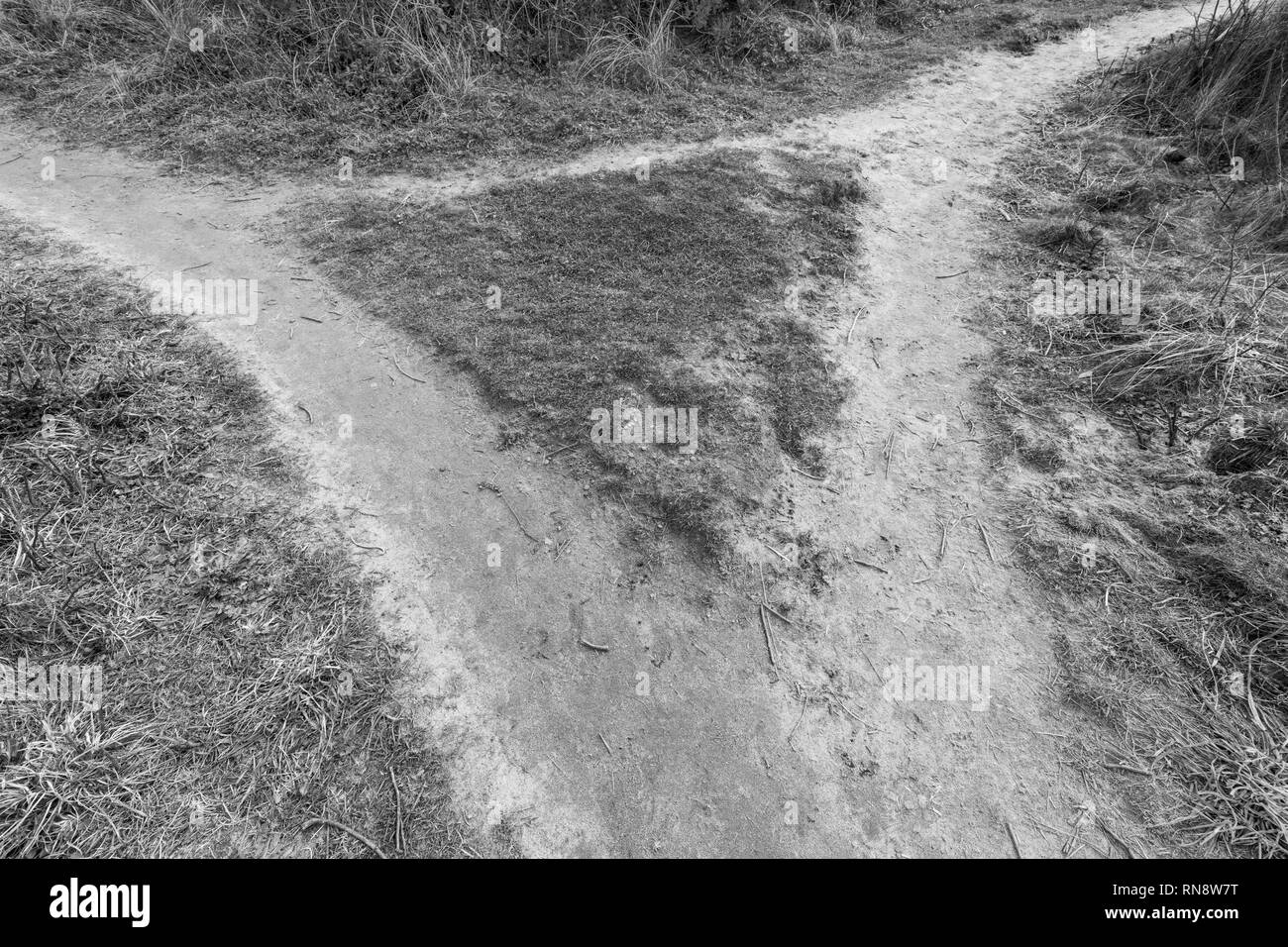 Footpaths crossing - possible metaphor for career choices, life choices, life at a cross roads, direction change, career path, multiple route concept. - Stock Image