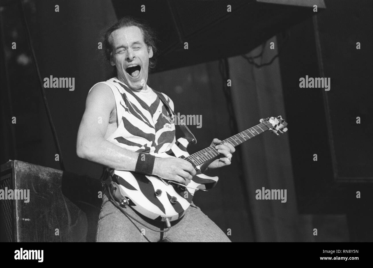Damn Yankees guitarist Ted Nugent is shown performing on stage during a 'live' concert appearance. - Stock Image