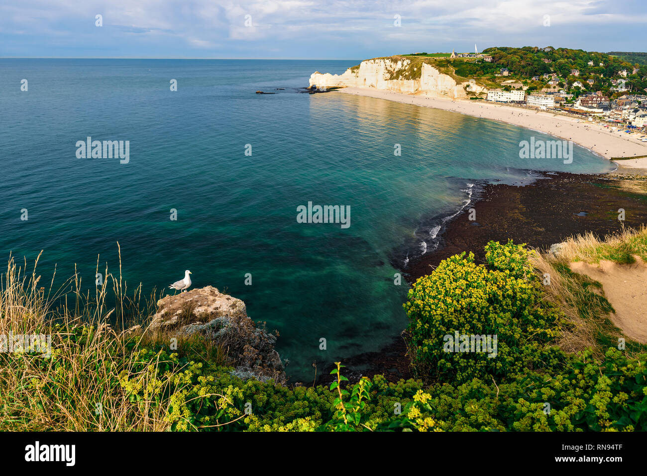 Beautiful landscape of famous coastline of Etretat, Normandy with cliffs Aval on sunset. France, Europe - Stock Image