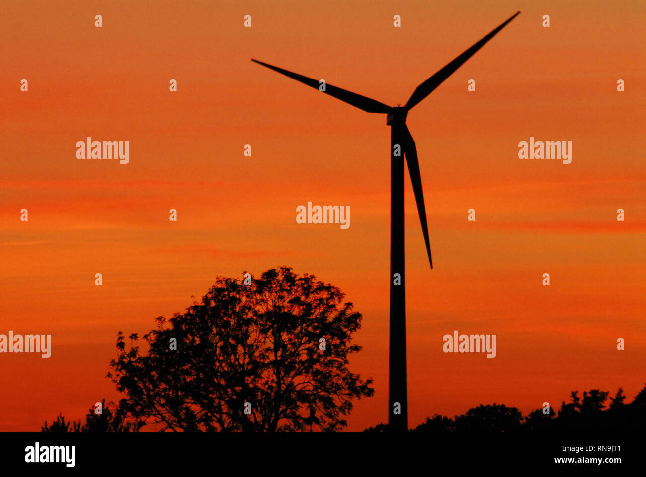 A modern windmill in the dawn of sustainable clean energy.  Photographed in the Swedish countryside.  Please note the ample space for your text. - Stock Image