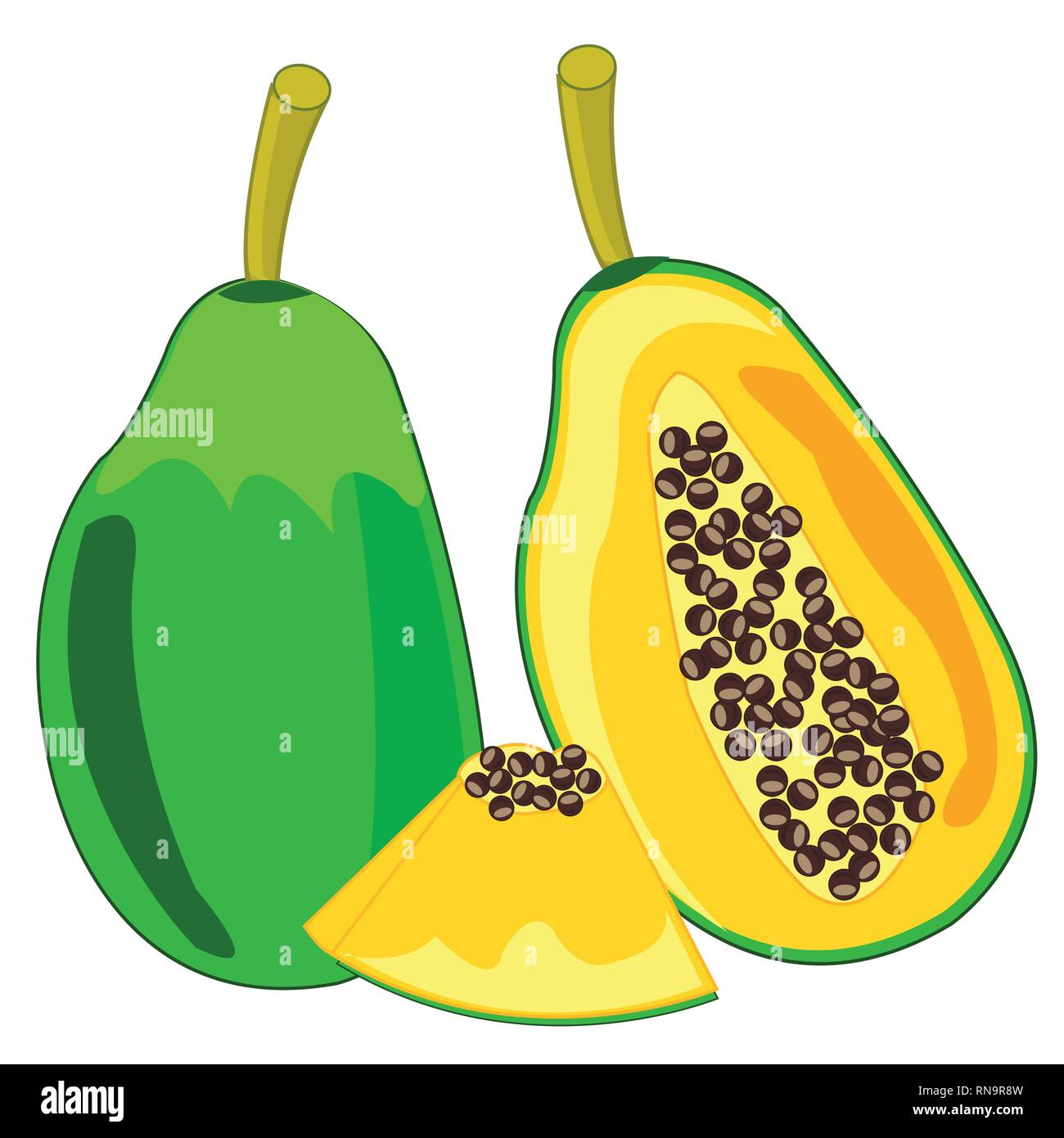 Papaya fruit on white background is insulated - Stock Vector