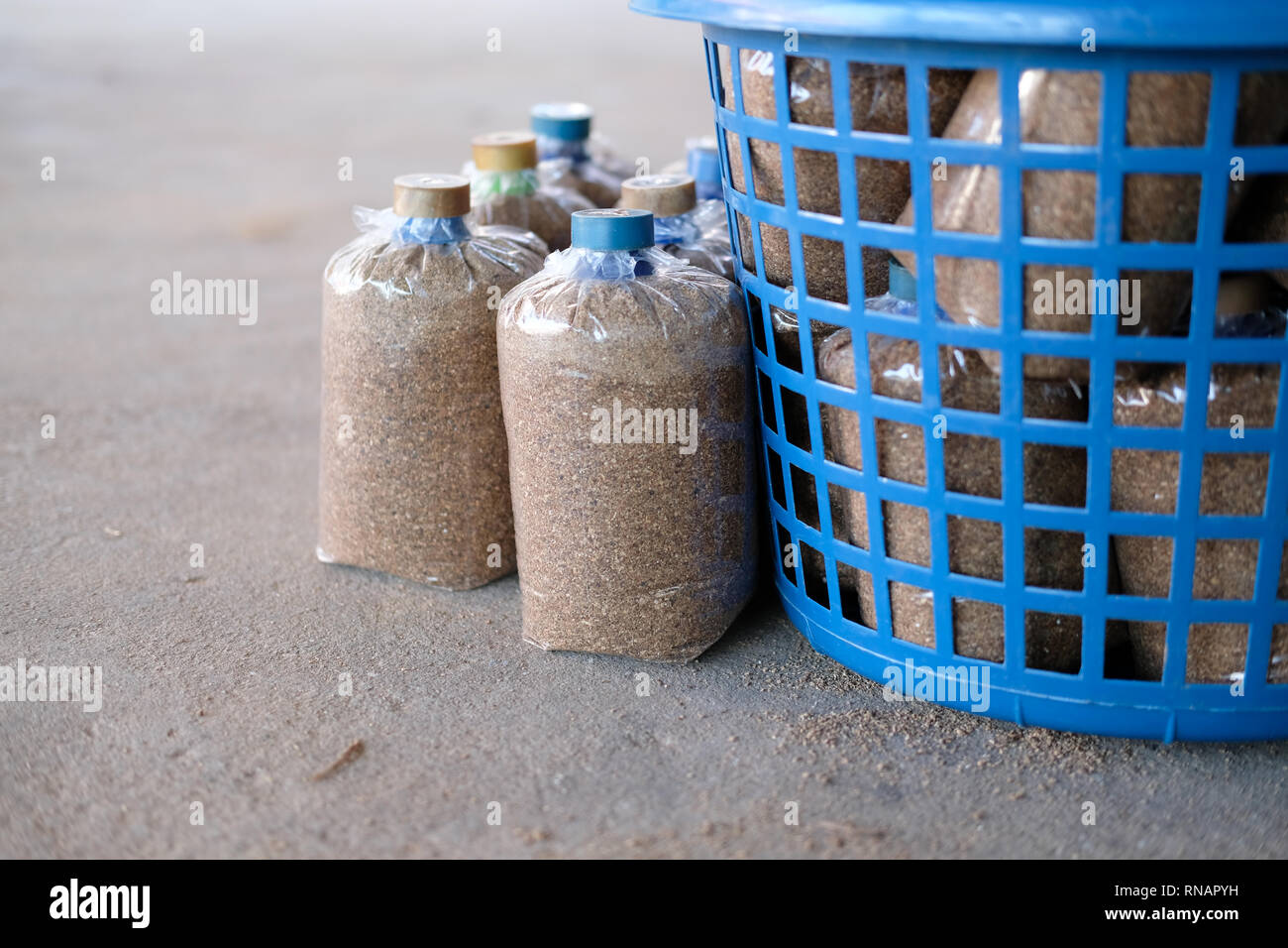artificial substrate in bag for growing edible mushroom in