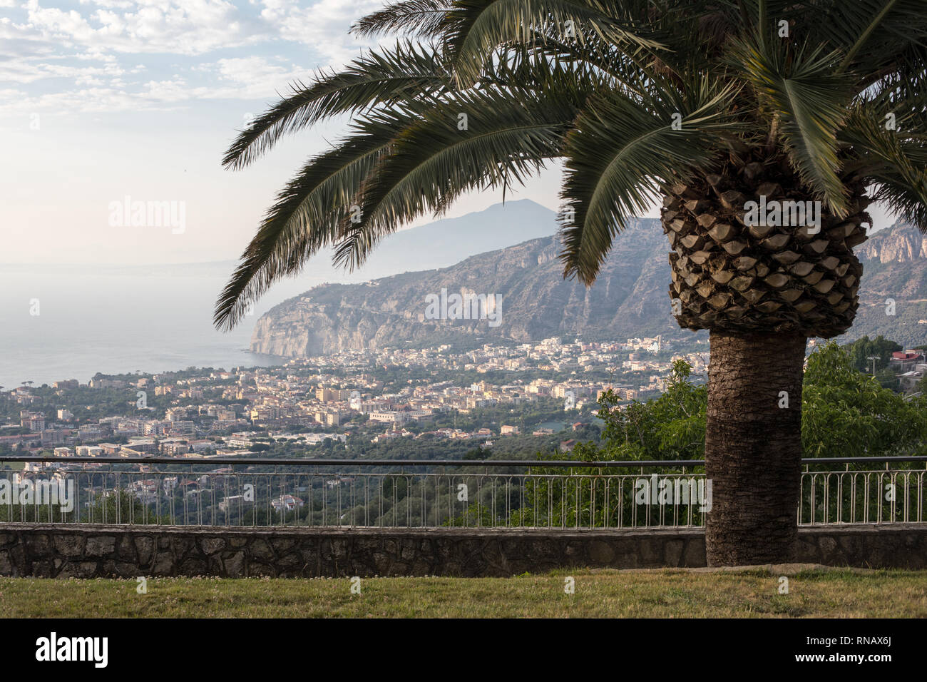 Palm tree with the Gulf of Naples and Vesuvius in the background - Stock Image