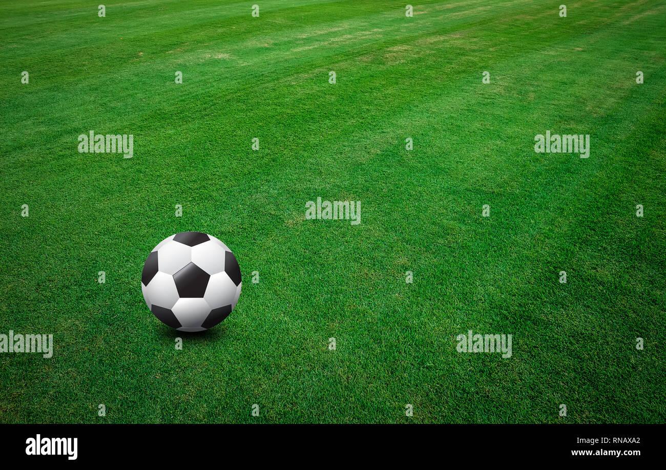 Seamless Vinyl Photography Backdrop Football Stadium Match: Fotbal Stock Photos & Fotbal Stock Images