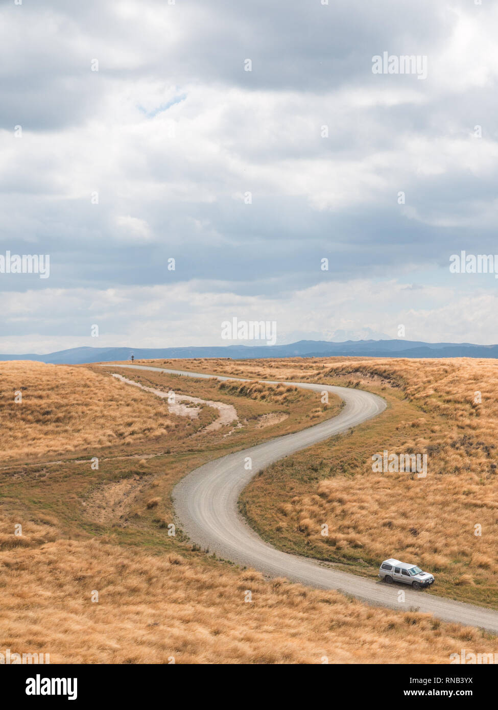 Curving road through tussock country on Ngamatea Station, Inland Mokai Patea, Central North Island, New Zealand - Stock Image