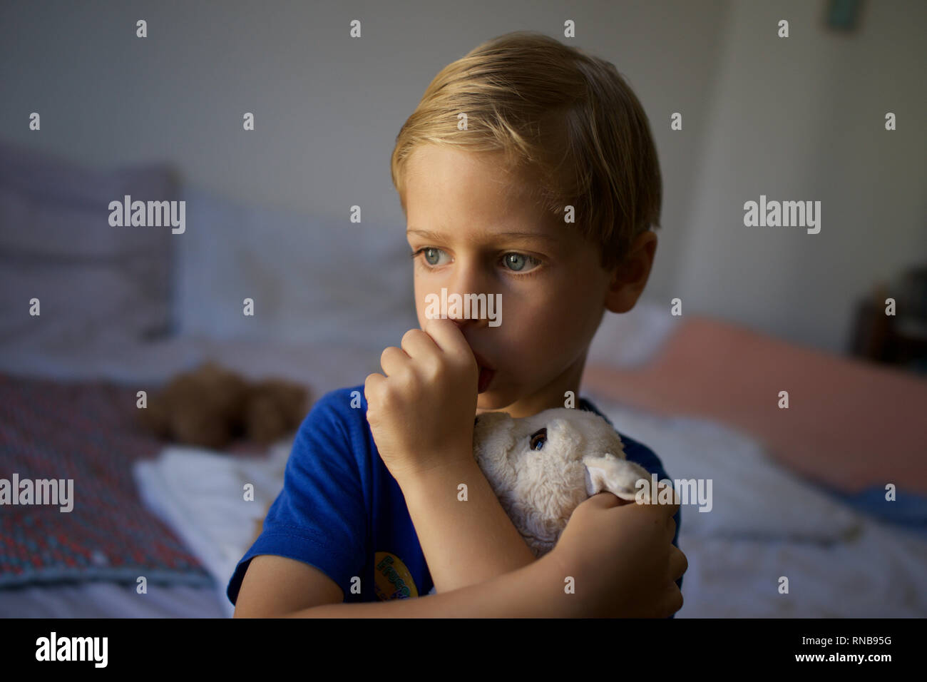 Child, young boy sucking thumb holding soft toy dog, tired, insecure - domestic setting - Stock Image