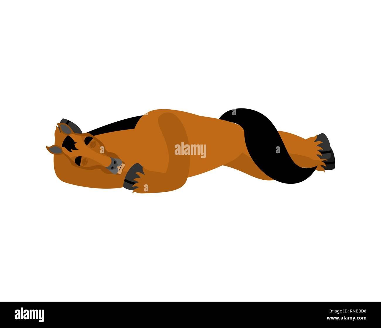 Horse sleeping. Steed asleep emotions. hoss dormant. Vector illustration - Stock Image
