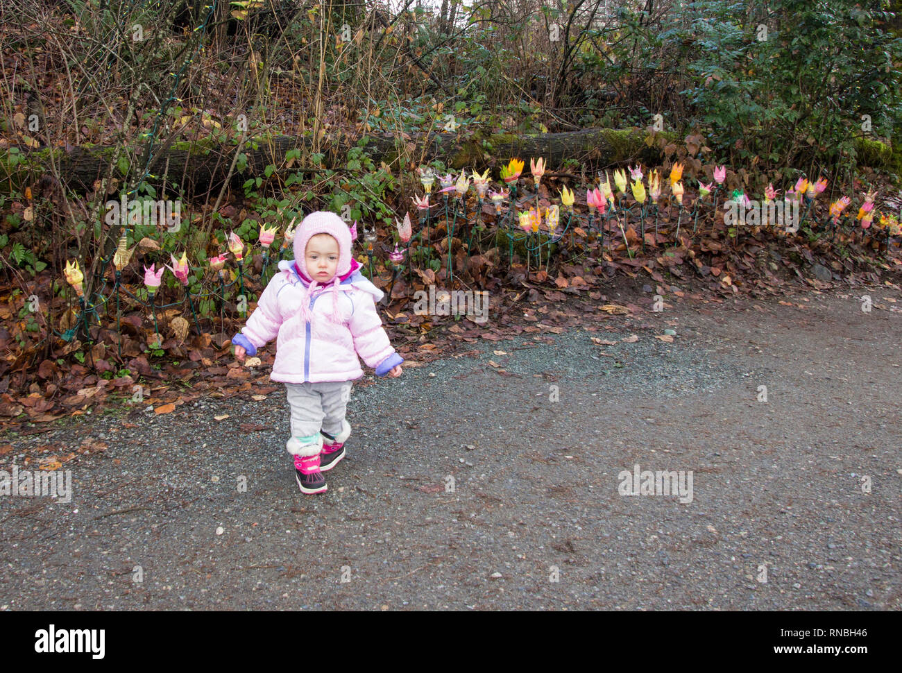 18 months old baby posing with the Christmas lights during a beautiful walk in the park. Toddler girl wearing all pink winter outfit outside - Stock Image