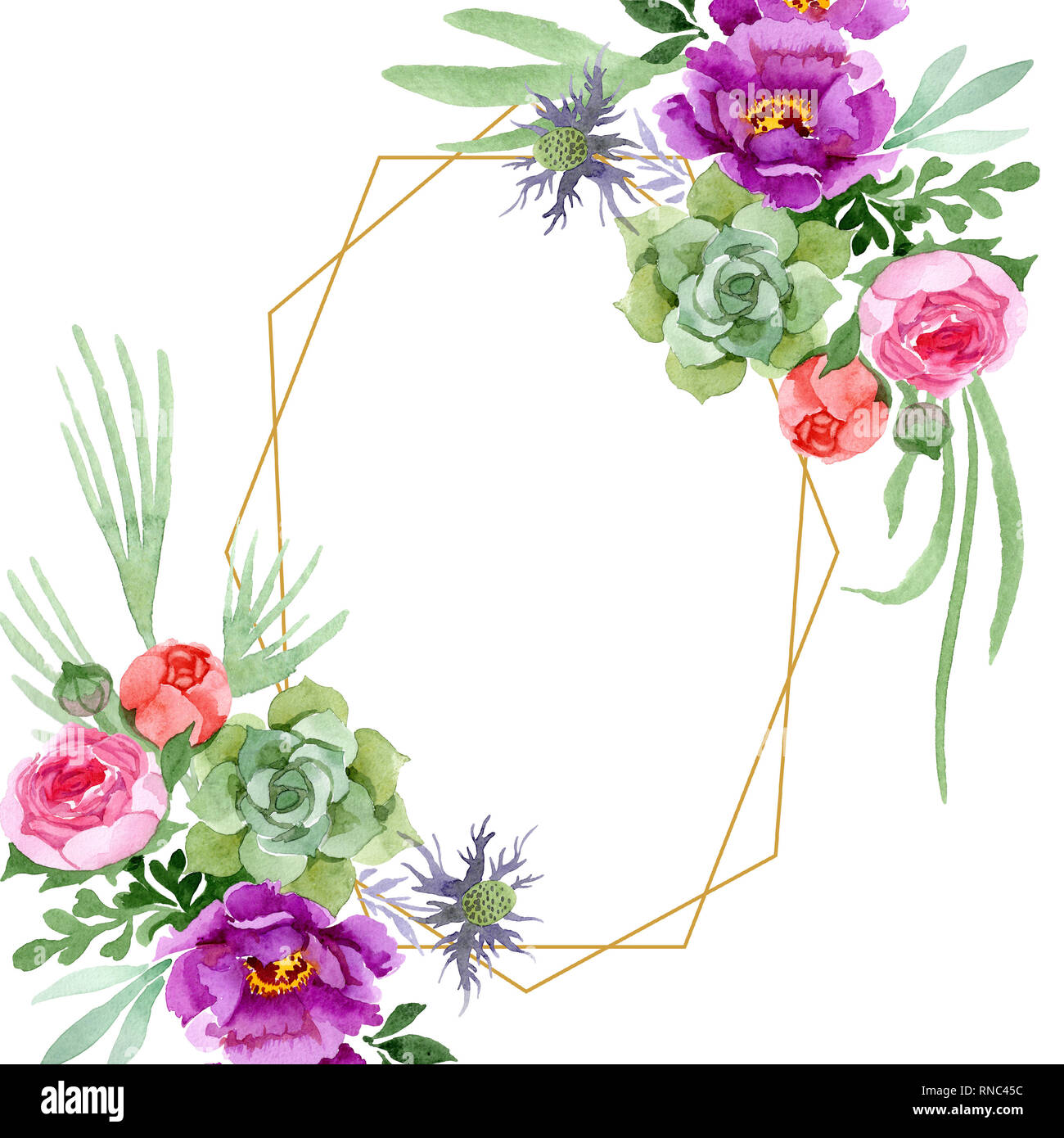 Peony And Succulent Bouquet Botanical Flower Watercolor Background Illustration Set Frame Border Ornament Square Stock Photo Alamy