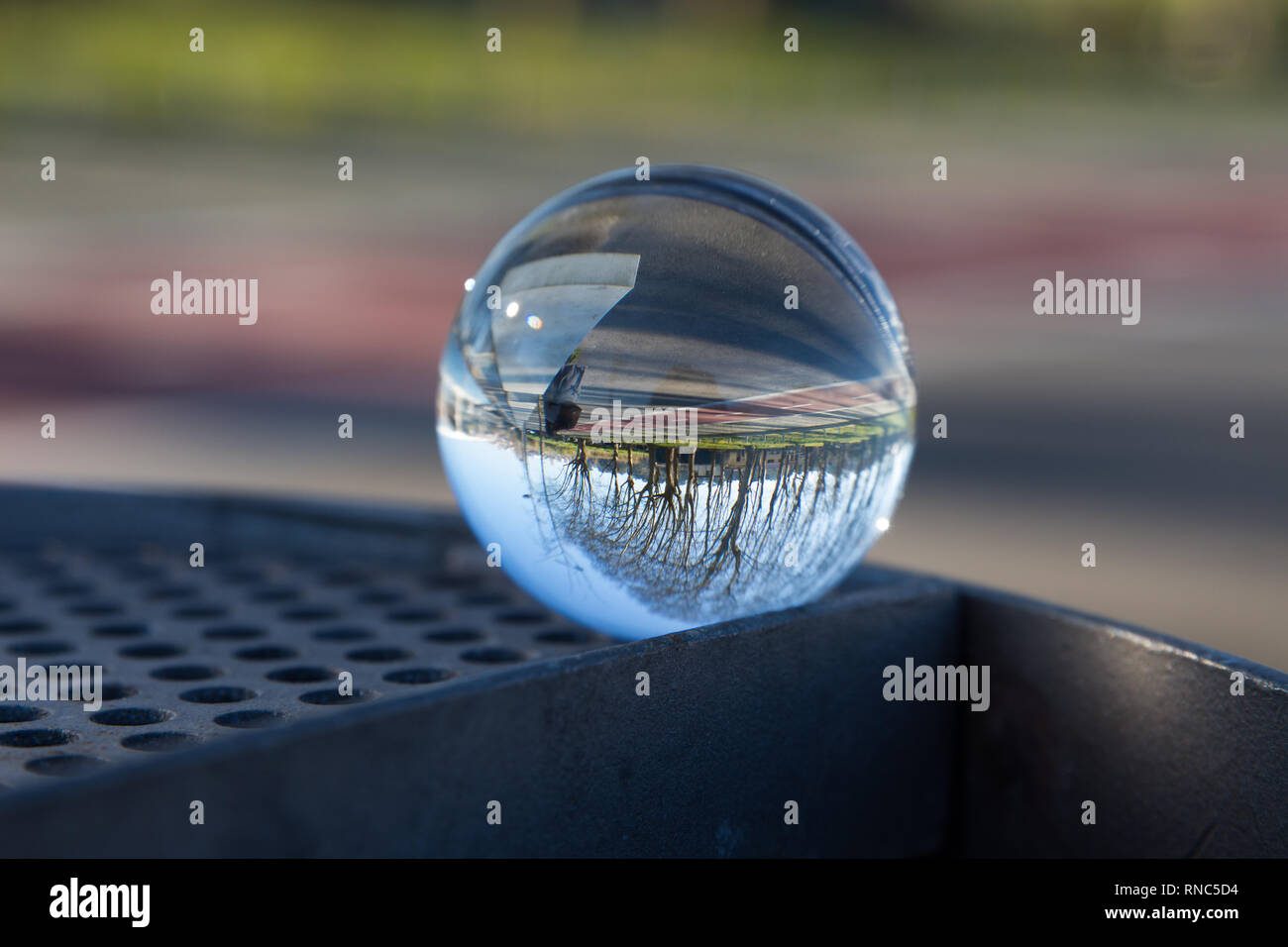 Nature on a glass Stock Photo