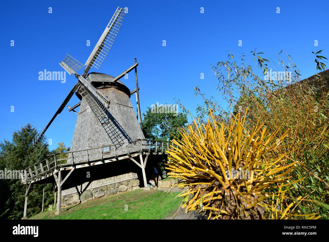 A historic cap windmill at the museum village in Cloppenburg (Germany), 31 October 2018. | usage worldwide Stock Photo