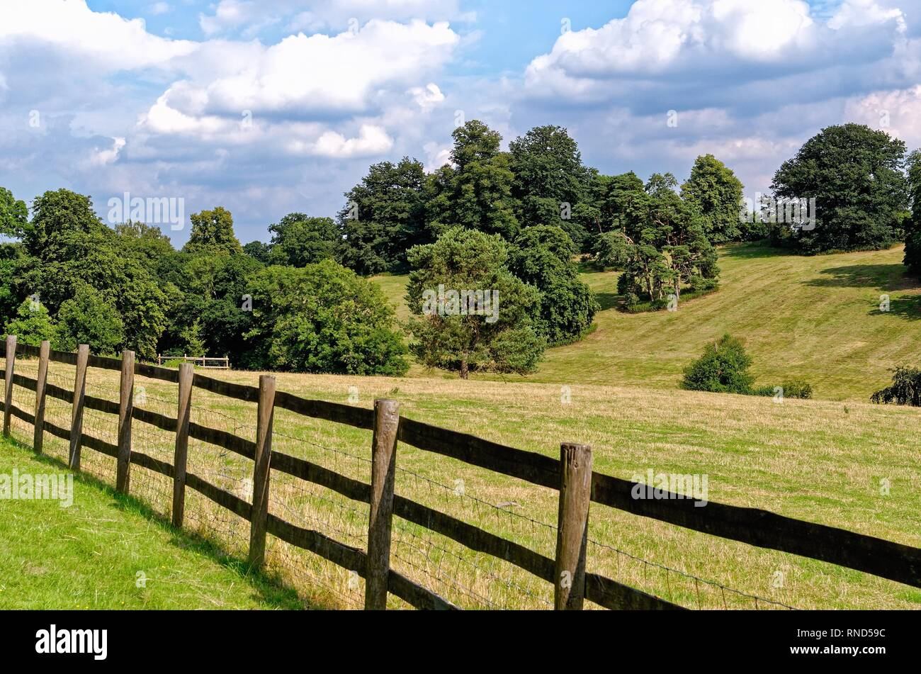 The Chiltern Hills in high summer near Henley on Thames Oxfordshire England UK - Stock Image