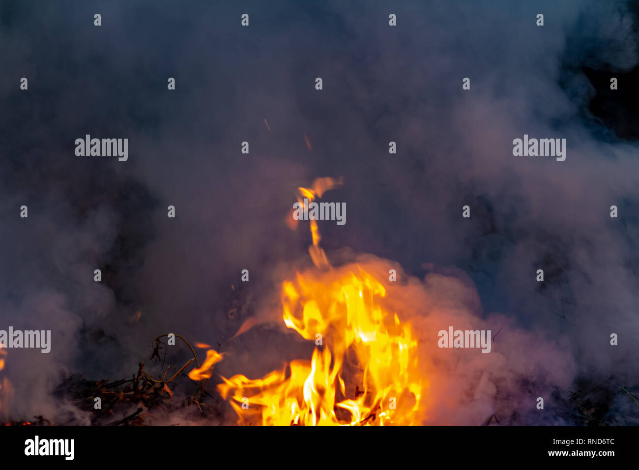 Forest wildfire at night whole area covered by flame and clouds of dark smoke. Distorted details due high temperature and evaporation gases during com - Stock Image