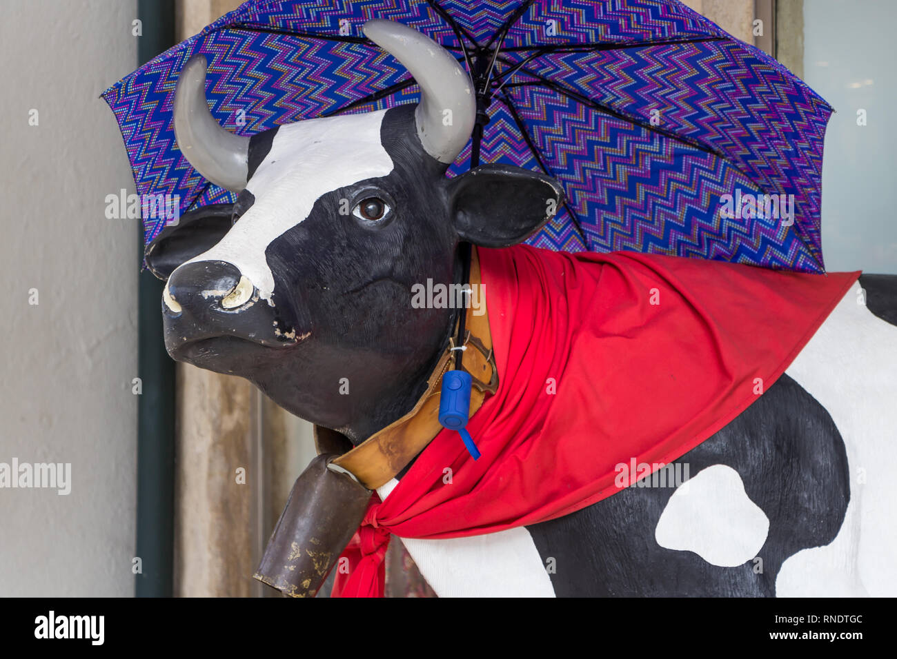 Decorated cow statue with a umbrella and a red sjawl - Stock Image