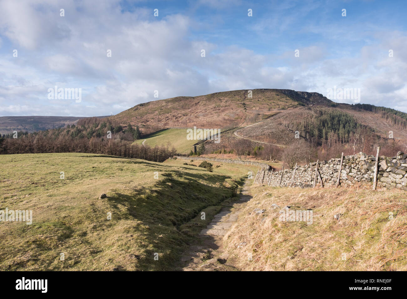 Hasty Bank seen from the Cleveland Way footpath on Carr Ridge near Clay Bank - Stock Image