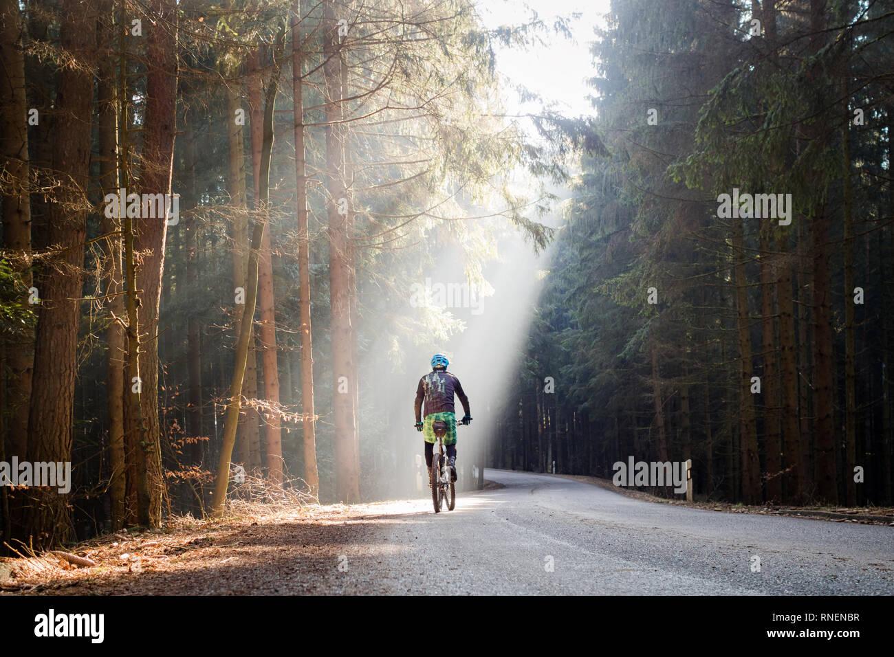 Mountainbiker in Sonnenstrahlen, Mountainbiken in der Hallertau, MTB, Biken - Stock Image