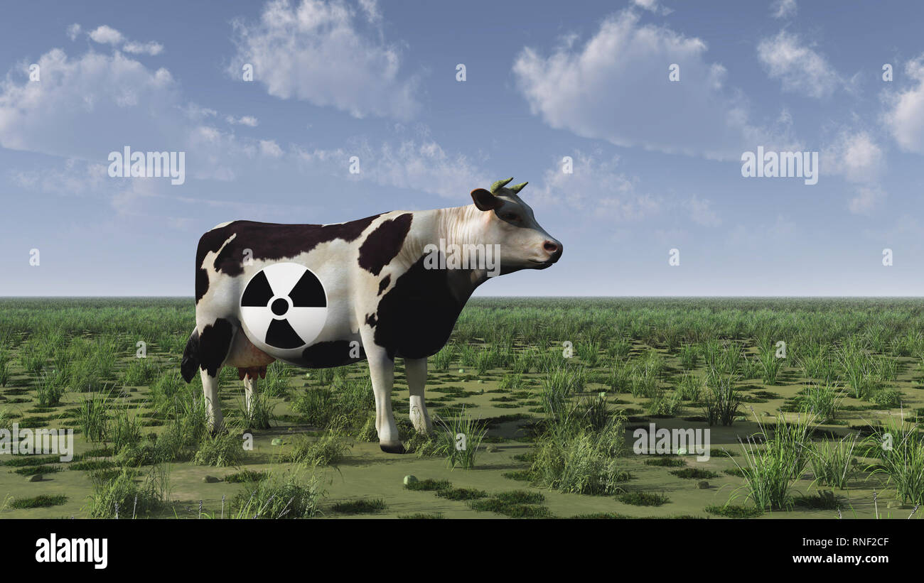 Cow with radiation sign stands on green field - Stock Image