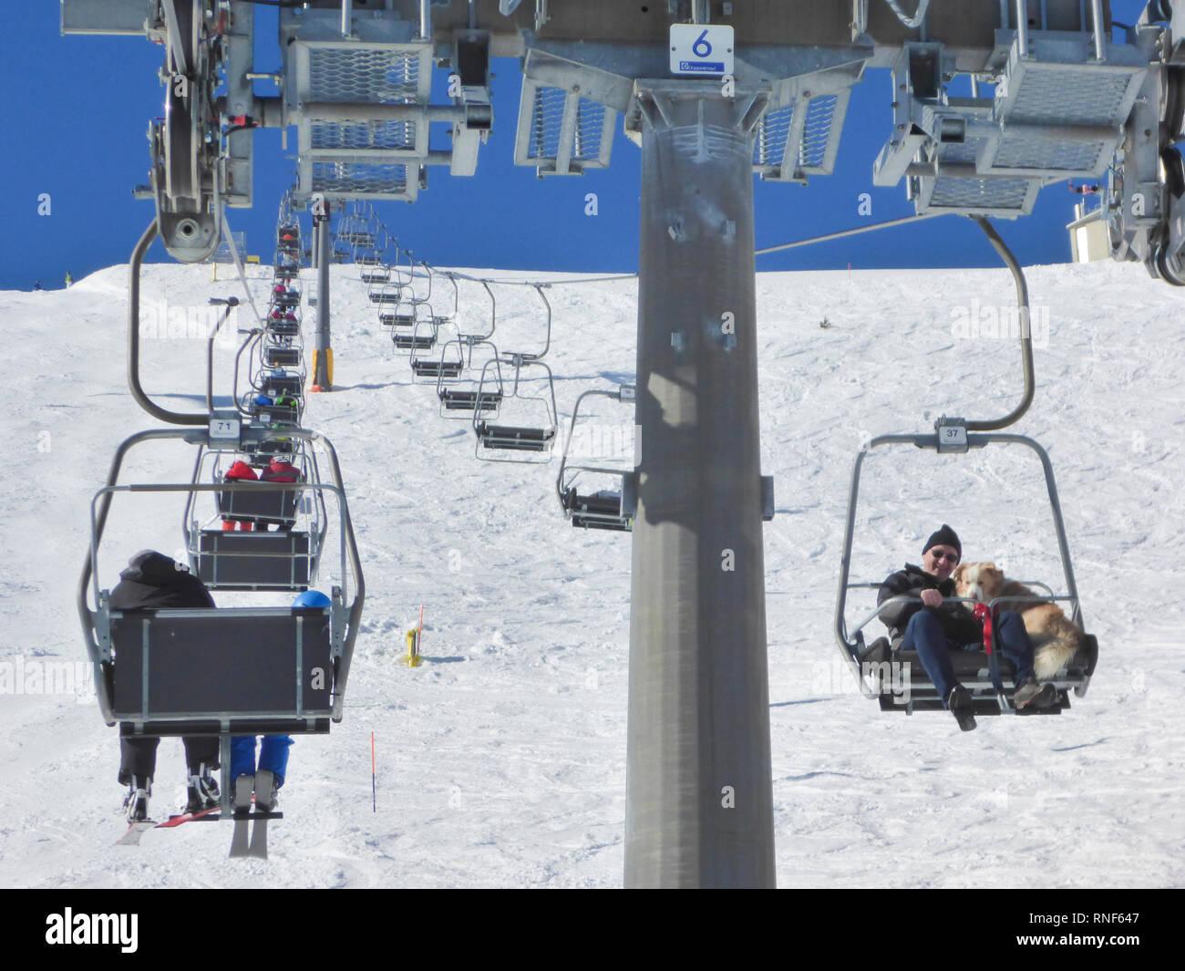 Mitterbach am Erlaufsee: mountain Gemeindealpe, ski lift, skier, downhill skiing, man with dog in Mostviertel, Niederösterreich, Lower Austria, Austri - Stock Image