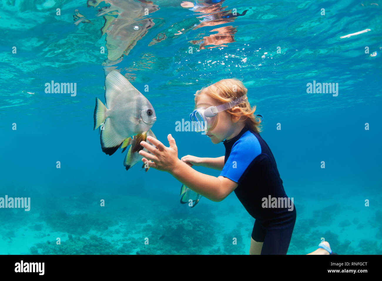 Happy family - active kid in snorkeling mask dive underwater, see tropical fish Platax ( Batfish ) in coral reef sea pool. Travel swimming adventure - Stock Image