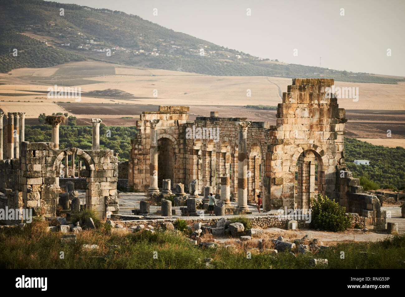 The Basilica at Volubilis is a partly excavated Berber and Roman city in Morocco near the city of Meknes, and considered the kingdom of Mauretania. Stock Photo