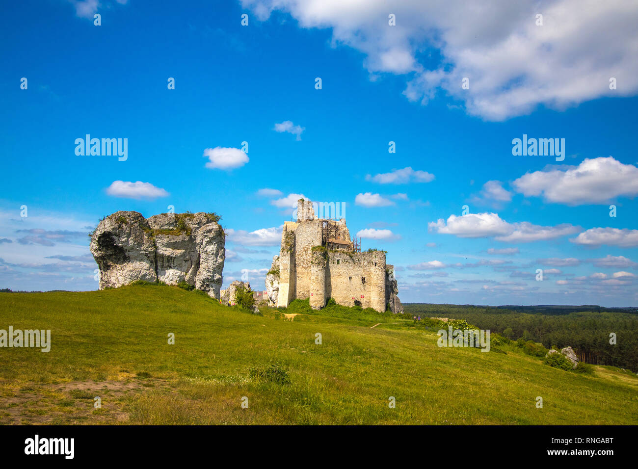 Picturesque Ruins of castle Mirow - Stock Image