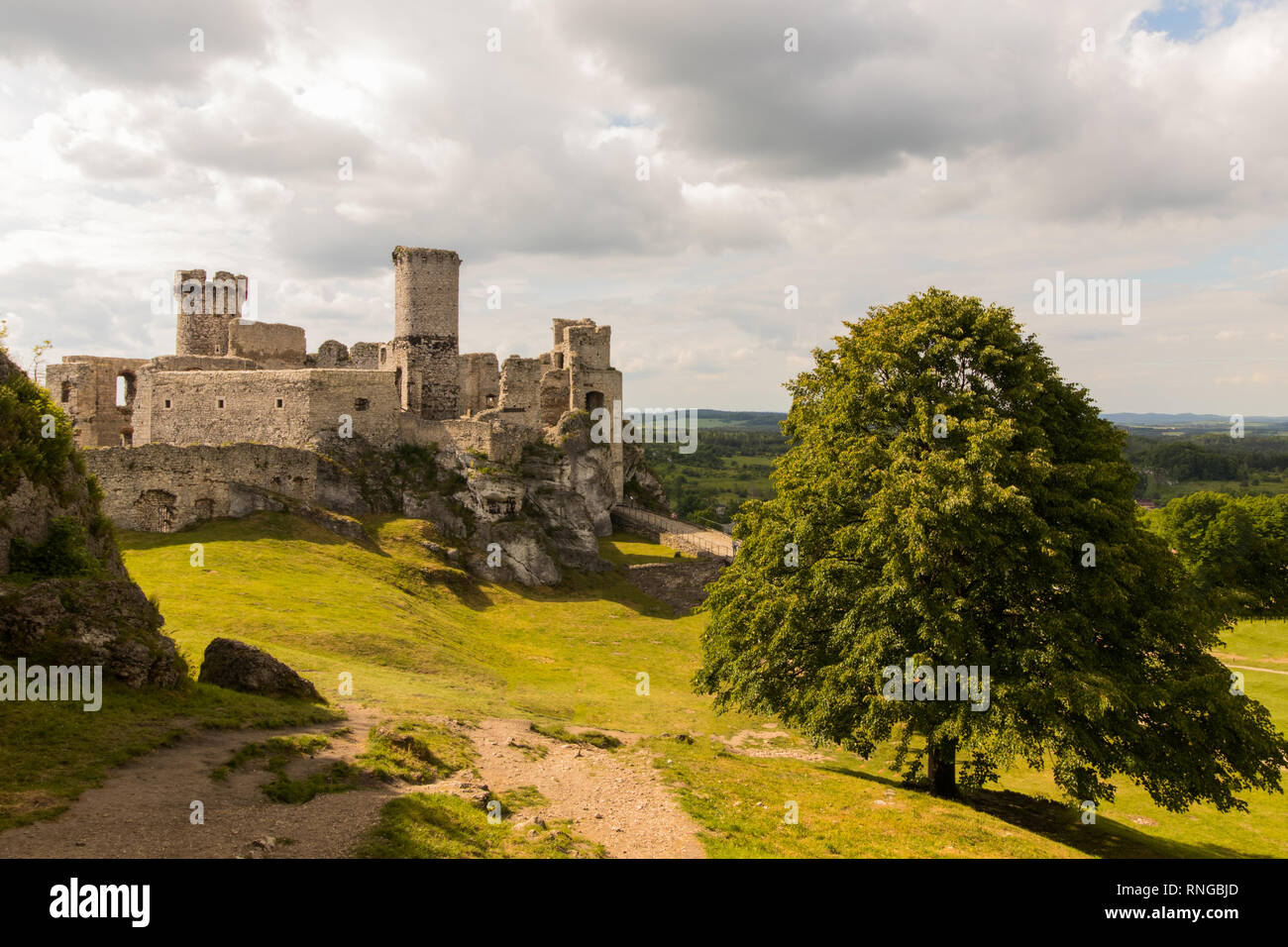 Ruins of medieval castle Ogrodzieniec, Poland - Stock Image