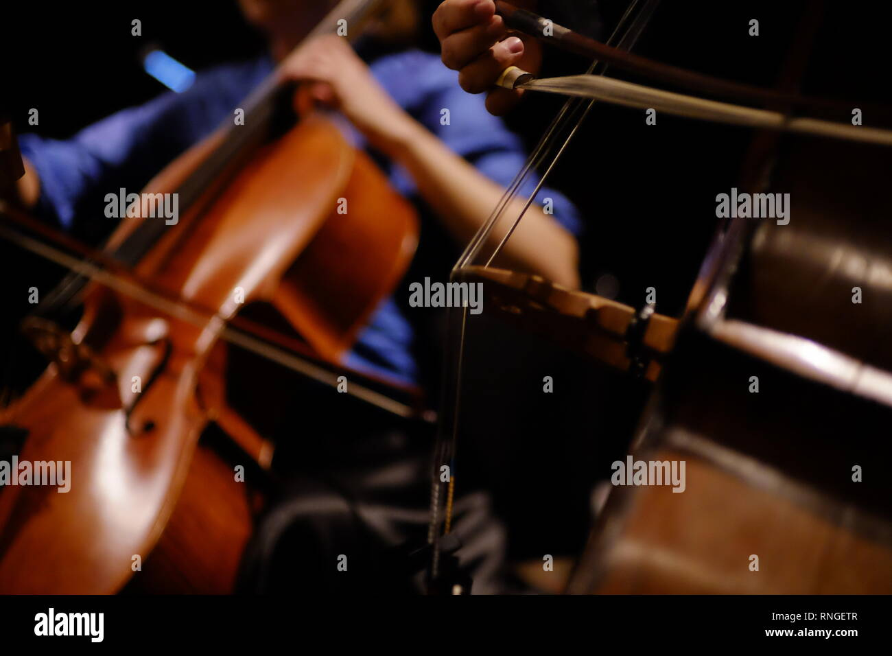 Double bass & cello being bowed in closeup in concert without faces being shown - Stock Image