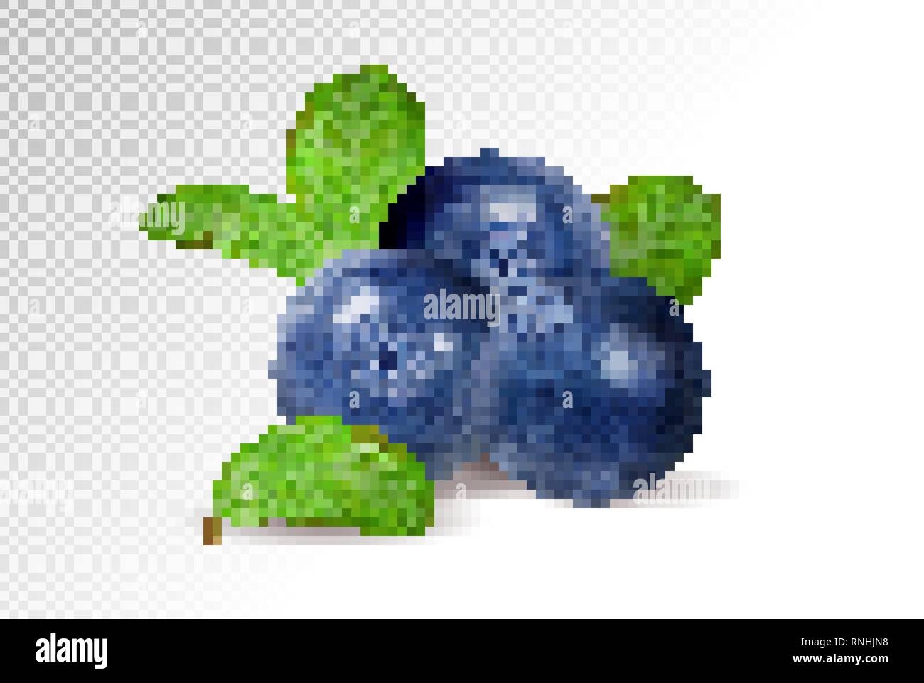 Blueberries on transparent background. Quality realistic vector, 3d illustration - Stock Vector