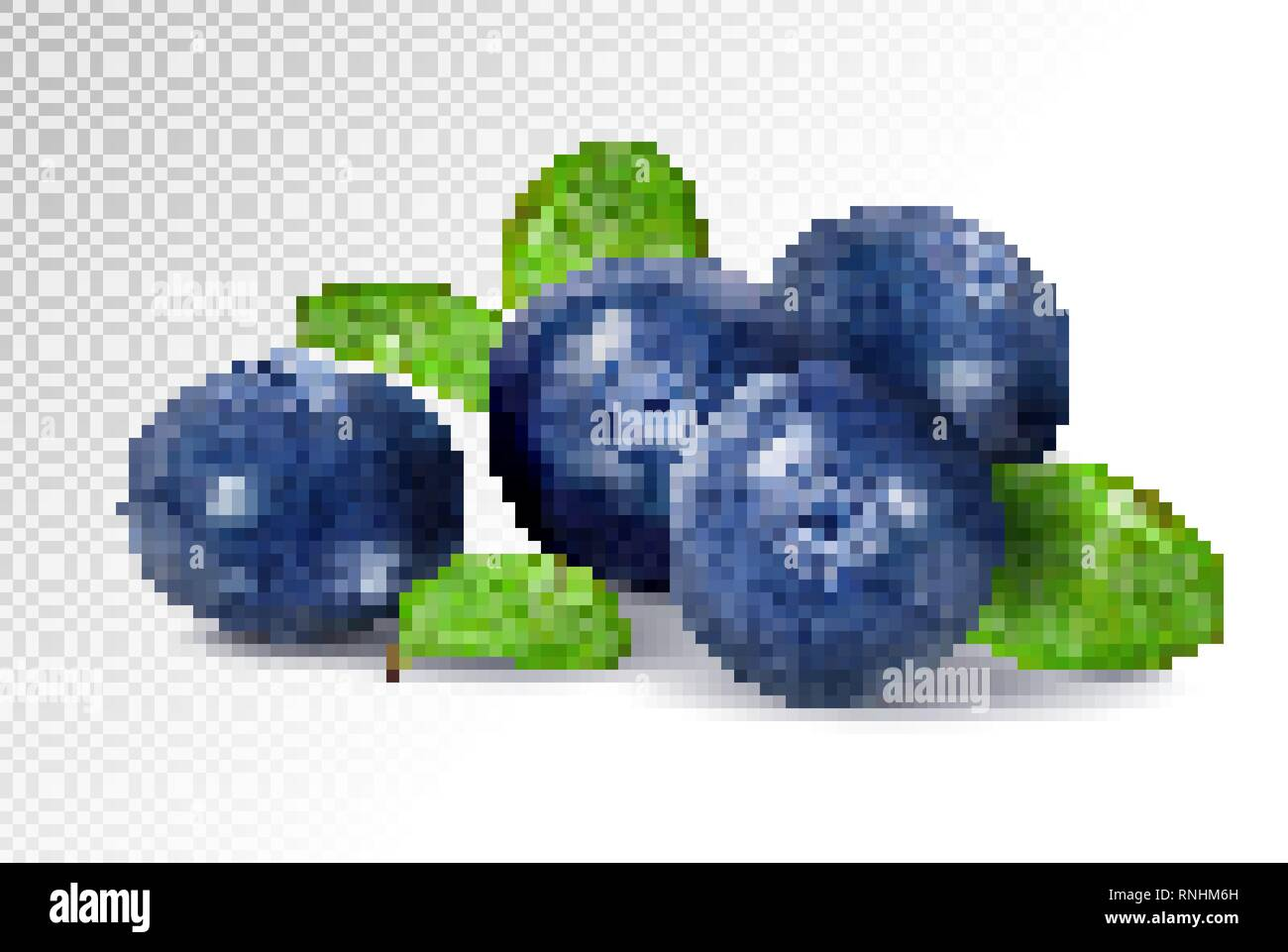 Blueberries isolated on white background. Quality realistic vector, 3d illustration - Stock Vector