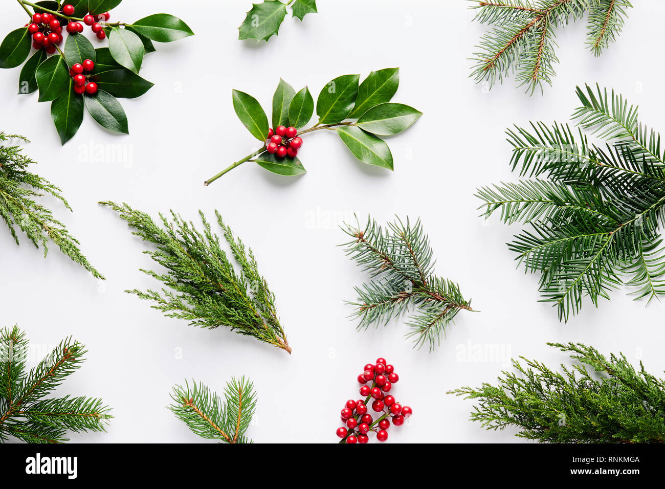 Collection Of Decorative Christmas Plants With Green Leaves And