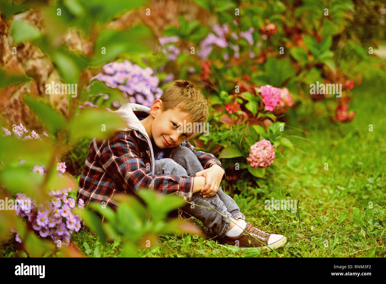 What to expect. Small boy relax in garden. Small boy expecting something. Live in the very soul of expectation of better things. Where expectation and - Stock Image